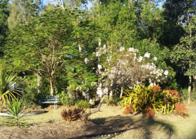 Moretons-Horticulture-Gold-Coast-Residential-and-Commercial-Landscaping-Solutions-Residential-Garden
